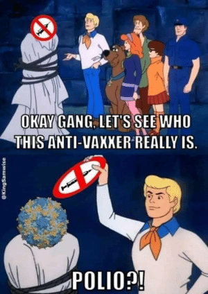Target, Tumblr, and Gang: OKAY GANG. LET'S SEEWHO  THIS ANTI-VAXXER REALLY IS  POLIO biolegend: And he'd have gotten away with it if it weren't for you meddling scientists.