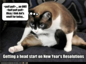 50+ Best Happy New Year 2019 Memes for WhatsApp Stories: Okay, i tink dat's  enuff for today..  Getting a head start on New Year's Resolutions 50+ Best Happy New Year 2019 Memes for WhatsApp Stories