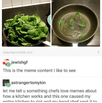Life, Love, and Meme: okaymad tumblr, com  jewishgf  This is the meme content l like to see  astra ngertomykin  let me tell u something chefs love memes about  how a kitchen works and this one caused my  ontiro Litab  an to riot an  my bood hof  cant it to Honestly do u ever think about how many people have talked shit about you behind your back? Wild how many people actually have nothing better to do with their life