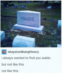Memes, Silence, and 🤖: okaysizedbangtheory  i always wanted to find you waldo  but not like this  not like this A moment of silence please.