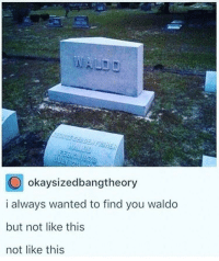 Time, Wanted, and All: okaysizedbangtheory  i always wanted to find you waldo  but not like this  not like this So there was a time limit after all