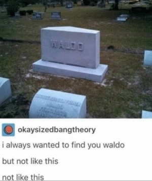 47 Memes That Are Worth Their Weight In Plutonium: okaysizedbangtheory  i always wanted to find you waldo  but not like this  not like this 47 Memes That Are Worth Their Weight In Plutonium