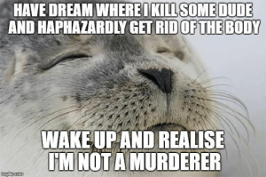 Dude, Brain, and Seal: OKILL SOME DUDE  HAVE DREAM WHERE  AND HAPHAZARDLY GET RID  OFTHE BODY  WAKE UP AND REALISE  MNOT A MURDERER Scumbag brain and satisfied seal make strange bedfellows.