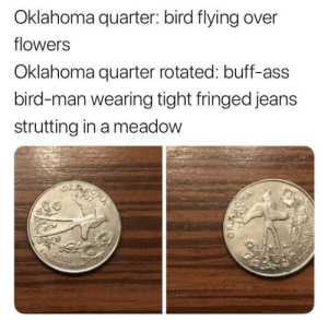 Buff-ass Bird-man: Oklahoma quarter: bird flying over  flowers  Oklahoma quarter rotated: buff-ass  bird-man wearing tight fringed jeans  strutting in a meadow Buff-ass Bird-man