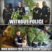 Memes, Police, and 🤖: OL ICE  POLICE  WITHOUT POLICE  WHO WOULD PROTECT US FROM PLANTS Hemp