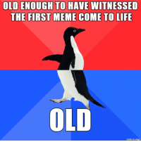Life, Meme, and Memes: OLD ENOUGH TO HAVE WITNESSED  THE FIRST MEME COME TO LIFE  OLD  made on imgur I count my lifespan in memes