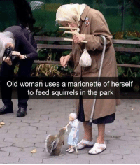 Memes, Old Woman, and Old: Old woman uses a marionette of herself  to feed squirrels in the park 😍 | Follow @aranjevi for more!