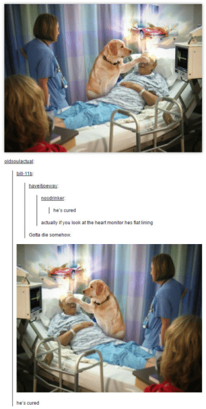 Its a miracle!omg-humor.tumblr.com: oldsoulactual  bill-11b  haveitioeway  nosdrinker  he's cured  actually if you look at the heart monitor hes flat lining  Gotta die somehow.  he's cured Its a miracle!omg-humor.tumblr.com