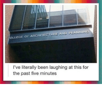 Tumblr, Blog, and Http: OLLEGE OF ARCHITECTURE AND PLANNING  l've literally been laughing at this for  the past five minutes lolzandtrollz:The Irony Is So Strong In This One
