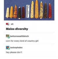 Love, Memes, and Girl: olt  Maize diversity  bottomwealthbinch  corn for every kind of country girl  taxloopholes  hey please don't i love corn