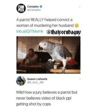 <p>Blacklivesmatter (via /r/BlackPeopleTwitter)</p>: OM Complex  PLEX  @Complex  A parrot REALLY helped convict a  woman of murdering her husband  tribal/OITMwHk @lhatyorubaguy  Queen LaDeefa  @lt_Aint ME  Wild how a jury believes a parrot but  never believes video of black ppl  getting shot by cops <p>Blacklivesmatter (via /r/BlackPeopleTwitter)</p>