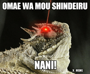 Meme, Reddit, and Blood: OMAE WA MOU SHINDEIRU  NANI!  X_MEME So I just found this lizard called the Horned Lizard and it literally shoots blood out of its eyes NANI