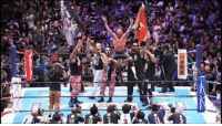 Memes, Work, and Congratulations: OMEGA MANIA Congratulations to Kenny Omega on winning the #NewJapan G1 tournament - perhaps The biggest achievement of his remarkable career. I have been a huge fan of Kenny's for a long time, and nice to see  hard work and dedication pay off. Let me hear from you #NJPW & #BulletClub fans.