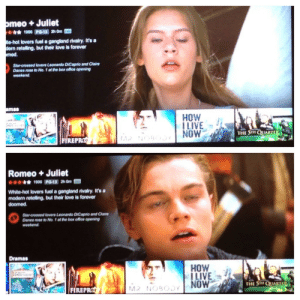 advice-animal:  Netflix sure used some excellent stills for Romeo and Juliet.http://advice-animal.tumblr.com/ : omeo + Juliet  *** 1990 PO-13 2h Om D  te-hot lovers fuel a gangland rivalry. It's a  dern reteling, but their love is forever  med.  Star-crossed lovers Loonardo DiCaprio and Claire  Danes rose to No. 1 at tho box ofice opening  weokend.  amas  HOW  !LIVE  NOW  THE STH QUARTE  FEREPRO  Romeo + Juliet  * 1996 PO-13 2h Om  White-hot lovers fuol a gangland rivalry. It's a  modern retolling, but their love is forover  doomed.  Star-crossed lovers Leonardo DICaprio and Claire  Danes rose to No. 1 at the box office opening  weekend  Dramas  НOW  ILIVE  NOW  56HTOTIULT  THE STH QUARTE  MR NOBOJY  FIREPRO advice-animal:  Netflix sure used some excellent stills for Romeo and Juliet.http://advice-animal.tumblr.com/