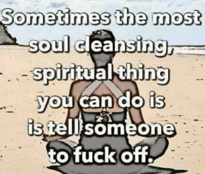 Dank, 🤖, and Soul: ometimes the most  Oss  JJJe  TJ  soul cleansinc  sp  oirltual  ing  can do is  someone  tofuck off