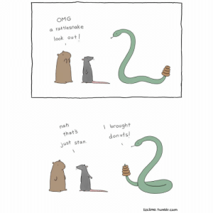 Memes, Omg, and Stan: OMG  a rattlesnake  look out l  na  thats  just stan.  I brought  donuts!  lizclimo. tumblr.com 🐍🍩 fbf lizclimocomics