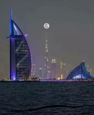 Omg, Tumblr, and Blog: omg-humor:  Perfect Night in Dubai