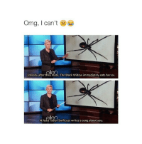 LMFAO follow my new account @ellenreaction.s if you want and thank you!! @ellenreaction.s: Omg, I can't  Literally after they mate, The Black Widow immediately eats her ex.  ellen  At least Taylor Swift just writes a song about you. LMFAO follow my new account @ellenreaction.s if you want and thank you!! @ellenreaction.s