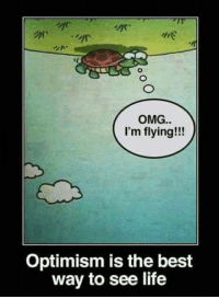 Dank, Life, and Omg: OMG..  I'm flying!!!  Optimism is the best  way to see life