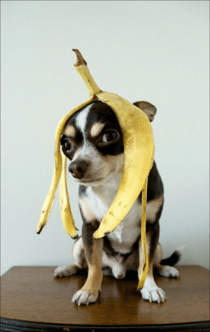 omg-images:  Love Banana: omg-images:  Love Banana