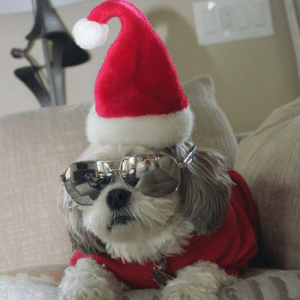 Omg, Tumblr, and Blog: omg-images:  Murphey is killing it!