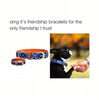 Omg, Girl Memes, and Democracy: omg it's friendship bracelets for the  only friendship l trust playing democracy 3