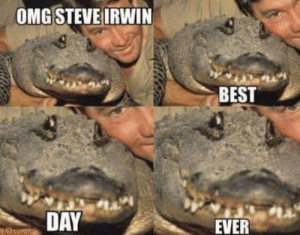 Omg, Steve Irwin, and Best: OMG STEVE IRWIN  BEST  DAY  EVER It really was for croco