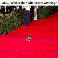 Wings on fleek 🐦 rp @lei.ying.lo goodgirlwithbadthoughts 💅🏻: OMG.. who is she? what is she wearing? Wings on fleek 🐦 rp @lei.ying.lo goodgirlwithbadthoughts 💅🏻