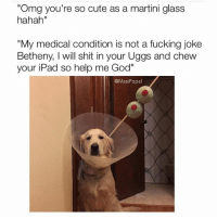 "Fucking Bethany always putting people down (@masipopal): ""Omg you're so cute as a martini glass  hahah""  ""My medical condition is not a fucking joke  Betheny, l will shit in your Uggs and chew  your iPad so help me God""  @Masi Popal Fucking Bethany always putting people down (@masipopal)"