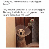 "Dammit, Bethany: ""Omg you're so cute as a martini glass  hahah""  ""My medical condition is not a fucking joke  Betheny, will shit in your Uggs and chew  your iPad so help me God""  GMasi Popal Dammit, Bethany"