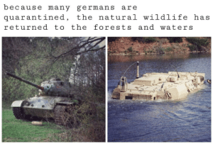 omghotmemes:  wildlife in Germany..: omghotmemes:  wildlife in Germany..