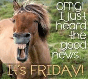 It s friday   TGIF   Pinterest   Friday, Its friday quotes and ...: omGi  t  Ijus  heard  the  good  news..  Il's FRIDAV It s friday   TGIF   Pinterest   Friday, Its friday quotes and ...