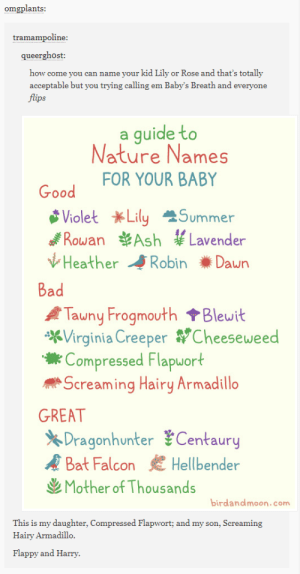 Ash, Bad, and Summer: omgplants  tramampoline  queerghost:  how come you can name your kid Lily or Rose and that's totally  acceptable but you trying calling em Baby's Breath and everyone  ps  a quide to  Nature Names  FOR YOUR BABY  Violet *Lily Summer  of Rowan Ash ¥Lavender  VHeather Robin Dawn  Bad  ATawny Frogmouth Blewit  Virginia Creeper y Cheesewee  Compressed Flapuort  Screaming Hairy Armadillo  Dragonhunter Centaury  Mother of Thousands  GREAT  A Bat Falcon  Hellbender  birdandmoon.com  This is my daughter, Compressed Flapwort; and my son, Screaming  Hairy Armadillo  Flappy and Harry Whats in a name?