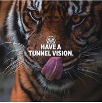 Memes, Vision, and Never: OMM  HAVE A  TUNNEL VISION. When you have your passion, you never even think about other things. It's tunnel vision! You go until you get it. 🔥 - tunnelvision passsion success millionairementor