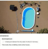 Memes, Dirty, and Animal: ommamarine  stunningpicture:  A intact pool between the dirty water of a flood in Germany  This looks like a halfway done sims house this looks like something someone would make on animal crossing pocket camp - Max textpost textposts