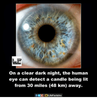 human eyes: on a clear dark night, the human  eye can detect a candle being lit  from 30 miles (48 km) away.
