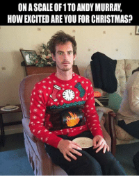 Memes, Excite, and Andy Murray: ON A SCALE OF 1 TO ANDY MURRAY,  HOW EXCITED ARE YOU FOR CHRISTMAS?  米  米 *米  米米.. *