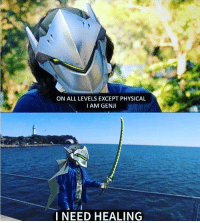 ON ALL LEVELS EXCEPT PHYSICAL  I AM GENJI  I NEED HEALING i need Healing , i require Healing , im injured 😂 🏥Who is You Favorite Healer Btw ? For me i Love ANA ! 😍 • Tags : Overwatch overwatchgame overwatchcosplay overwatchmemes overwatchhanzo hanzo genji Ana tracer reaper team_kill overwatchplays overwatchmeme play gamer gamer_girl player funny meme