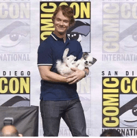 Cute, Memes, and Comic Con: ON  ATIONAL  INTERNATI  D IE G 0  S AN D I  ATI Alfie Allen brought his cute doggie to the comic con