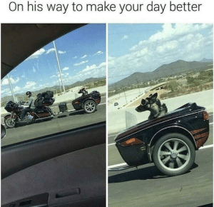 Got, Day, and Make: On his way to make your day better Already got to me
