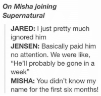 "Memes, Jared, and 🤖: On Misha joining  Supernatural  JARED: I just pretty much  ignored him  JENSEN: Basically paid him  no attention. We were like,  ""He'll probably be gone in a  week''  MISHA: You didn't know my  name for the first six months! Poor Misha 😂❤ ~Nathouツ"