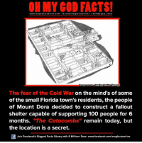 "Memes, 🤖, and Public Library: ON MY GOD FACTS!  www.om facts online.com I fb.com  mgfacts on  I a oh y god facts  mage source  Hartley Public Library  The fear of the Cold War on the mind's of some  of the small Florida town's residents, the people  of Mount Dora decided to construct a fallout  shelter capable of supporting 100 people for 6  months. ""The Catacombs  remain today, but  the location is a secret.  Join Facebook's Biggest Facts Library with 6 Million+ Fans- www.facebook.com/omgfactsonline"