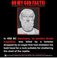 Memes, Greek, and Mistaken: ON MY GOD FACTS!  www.omg facts online.com I fb.com  g facts online I o oh y god facts  Innage source  Wikipedi  In 458 BC Aeschylus, an ancient Greek  tragedian  was killed by a tortoise  dropped by an eagle that had mistaken his  bald head for a rock suitable for shattering  the shell of the reptile.  Join Facebook's Biggest Facts Library with 6 Million+ Fans- www.facebook.com/omgfactsonline