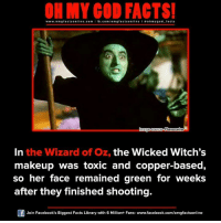 Memes, Wizard of Oz, and 🤖: ON MY GOD FACTS!  www.omg facts online.com  I fb.com/o m g facts online I a oh y god facts  lmage source Flavorwire  In the Wizard of Oz, the Wicked Witch's  makeup was toxic and copper-based,  so her face remained green for weeks  after they finished shooting.  Of Join Facebook's Biggest Facts Library with 6 Million+ Fans- www.facebook.com/omgfactsonline