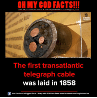 omg facts: ON MY GOD FACTS!!!  www.omg facts online.com I fb.com/omg facts online I Goh my god-facts  OH MY COD  FACTS!  commons edia or  Imag  The first transatlantic  telegraph cable  was laid in 1858  Join Facebook's Biggest Facts Library with 6 Million+ Fans- www.facebook.com/omgfactsonline
