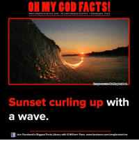 Memes, Waves, and Huffington: ON MY GOD FACTS!  www.omg online.com I fb.com  omg facts online I ohm ygo d facts  facts Cmagesource Huffington Post  Sunset curling up  with  a Wave  Join Facebook's Biggest Facts Library with 6 Million+ Fans- www.facebook.com/omgfactsonline