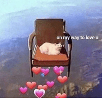 Love, Memes, and On My Way: on my way to love u https://t.co/eeIcn6bzwz