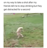 Drinking, Friends, and Memes: on my way to take a shot after my  friends tell me to stop drinking but they  get distracted for a second  realpettymayo Me