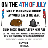 Memes, 4th of July, and Pets: ON THE 4TH OF JULY  MORE PETS GO MISSING THAN ON  ANY OTHER DAY OF THE YEAR  DRINK BOOZE. BLOW STUFF UP. HAVE FUN.  JUST DON'T FORGET ABOUT YOUR FURRY LITTLE COMPANIONS WHO  ARE AT HOME THINKING THAT THE WORLD IS COMING TO AN END.  GIVE THEM EXTRA BACKRUBS AND TREATS AND WHATNOT  HAPPY 4TH  THE OATMEAL