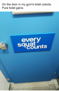 36 Random Memes You Should Check Out If You Have Nothing Better To Do Right Now: On the door in my gym's toilet cubicle  Pure toilet gains  sayslnts  everV  squat 36 Random Memes You Should Check Out If You Have Nothing Better To Do Right Now